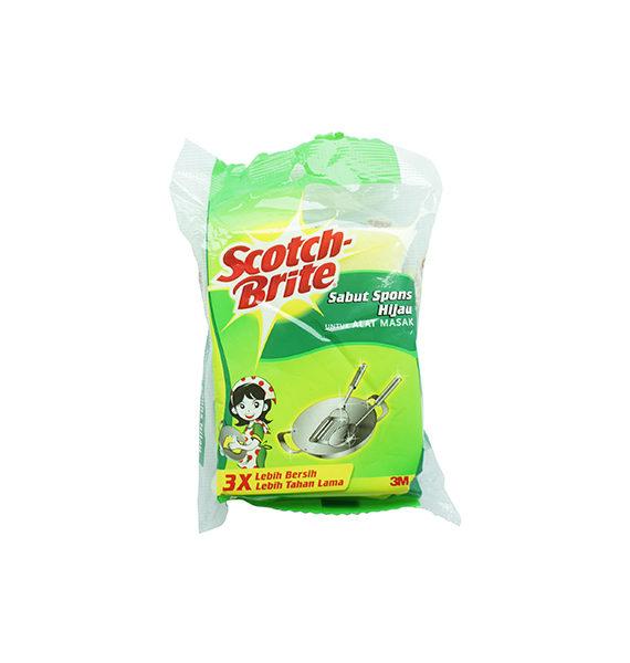 Aqua Scour Sponge